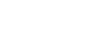 The savvy flyer