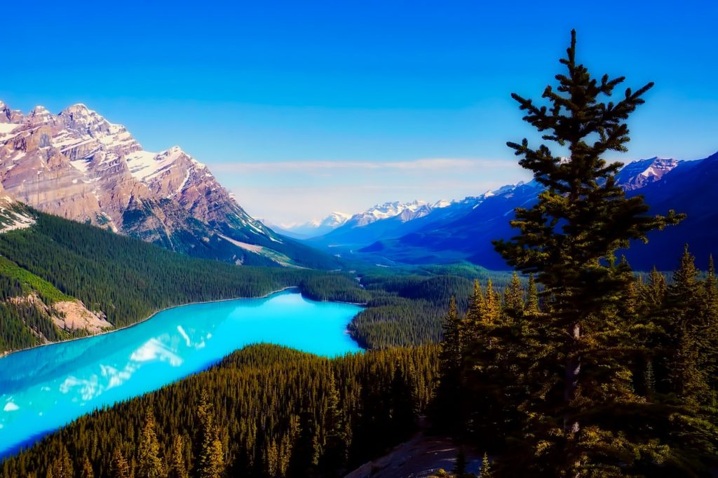 Take a trip to Canada